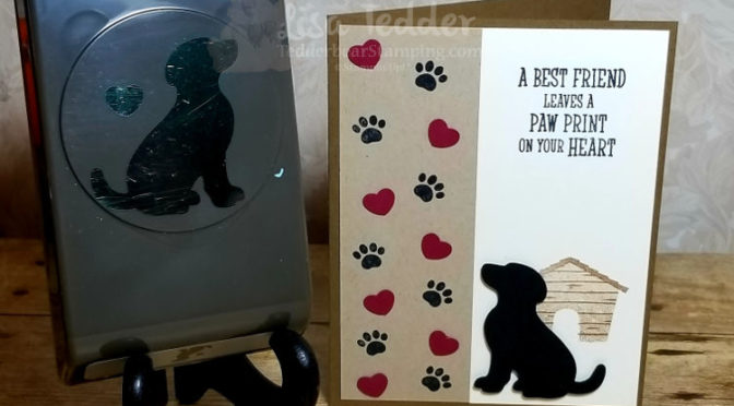 Happy Tails masculine card